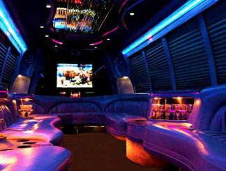 18 passenger party bus rental Orlando