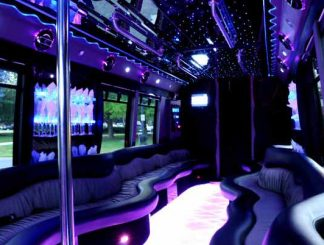 22 people party bus Orlando